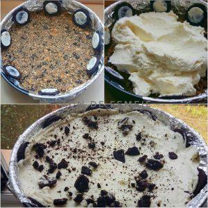 cheesecake fara coacere asamblare 1