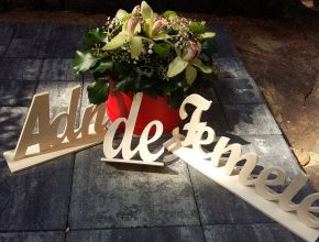 personalizare in lemn logo din lemn